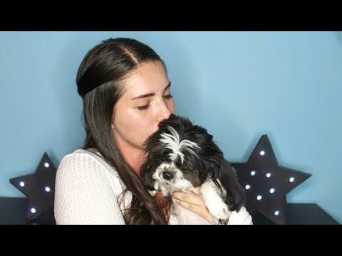 ASMR - Fuzzy Pet Tag 🐶