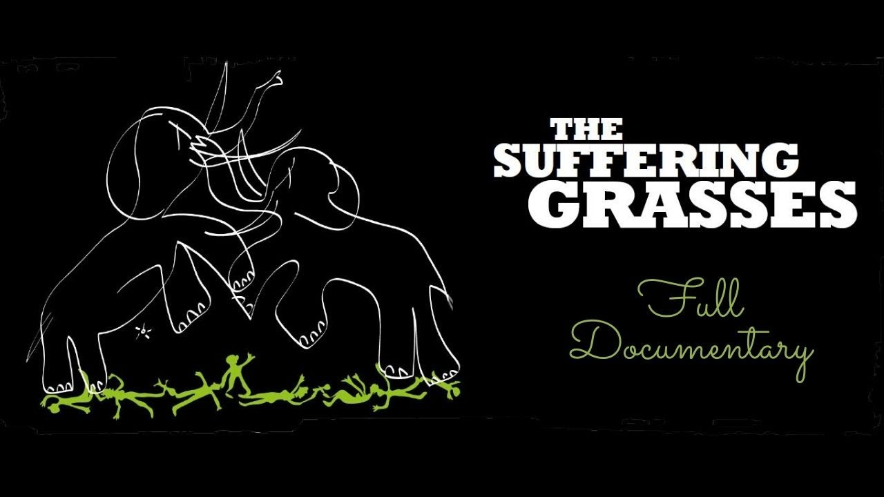 Download The Suffering Grasses: When Elephants Fight, It Is the Grass That Suffers | Documentary