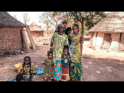 🇨🇮 Côte-d'Ivoire: Les Peuls, peuple des Savanes 🐄 🧑🏿🌾