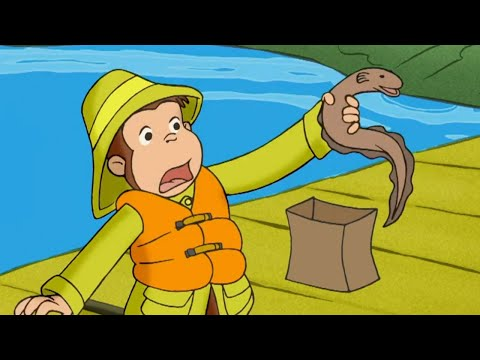Curious George 🐵George And The One That Got Away 🐵 Kids Cartoon 🐵 Kids Movies | Cartoons For Kids