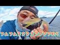 ハワイでフムフムヌクヌクアプアア釣りに挑戦!【ハワイで海釣りおかっぱり】