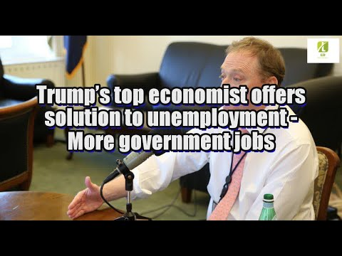 Trump's top economist offers solution to unemployment: More government jobs