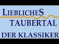 Liebliches Taubertal ❤ Von Rothenburg Ob Der Tauber Bis Wertheim 🚲🚲 [RADTOUR DOKU]