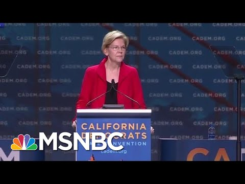 Cheers (And Jeers) For Democratic Candidates At California Convention | The Last Word | MSNBC