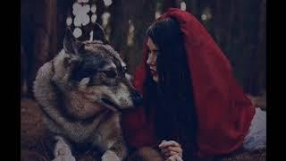 اغنية (ليلى والذئب )