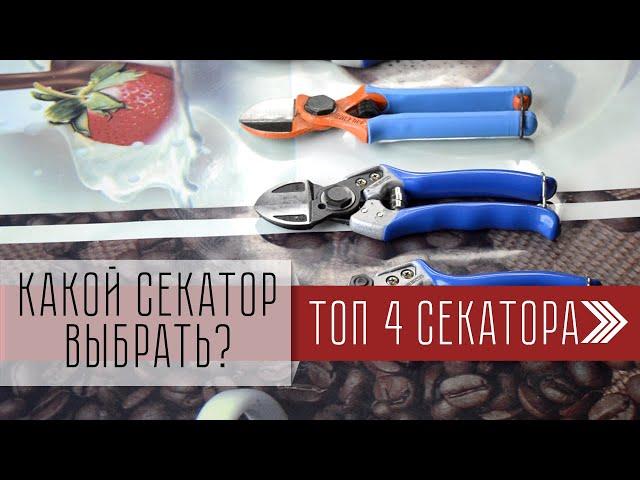 Какой секатор выбрать? Инструменты для обрезки деревьев. ТОП 4. Vesco, DUE BUOI. Обзор товаров.