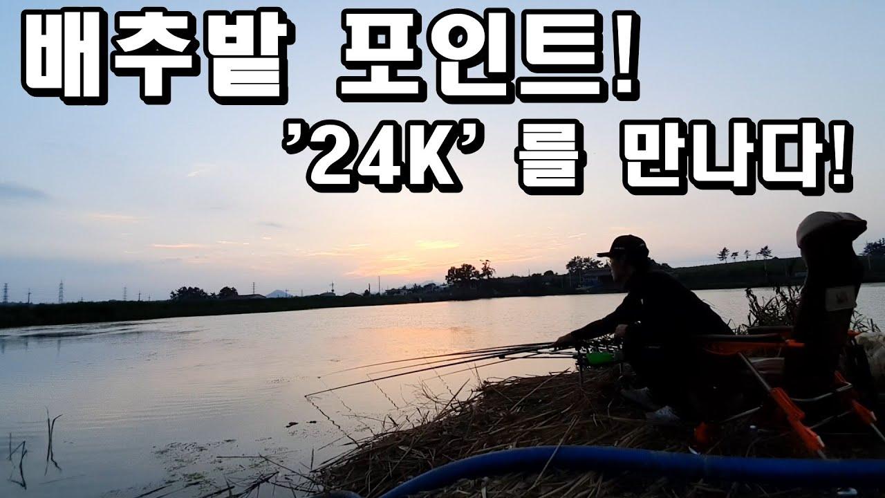 [뽕돌TV]배추밭 앞에서 '24K'를 만나다!/9짜 잉어 영상 포함
