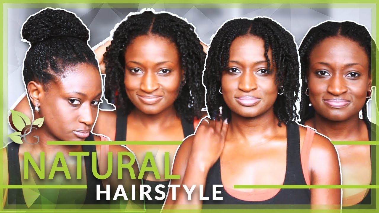 Thick Black Hair Hairstyles Natural Hairstyle High Bun With Mini Twist Thick Natural Hair