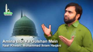 Amina Bibi Kay Gulshan Mein by Mohammad Ikram Haqani