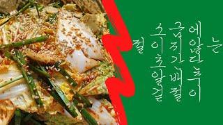 초간단 알배추 겉절이 (Feat.라면) 2021.03.…