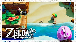 ZELDA Link's Awakening (Switch)