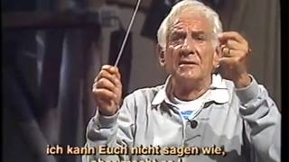 Triangle Lessons with Leonard Bernstein