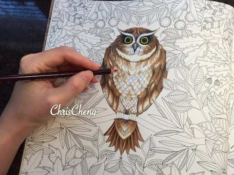 owls-drawing-/-coloring-with-colored-pencils-|-secret-garden