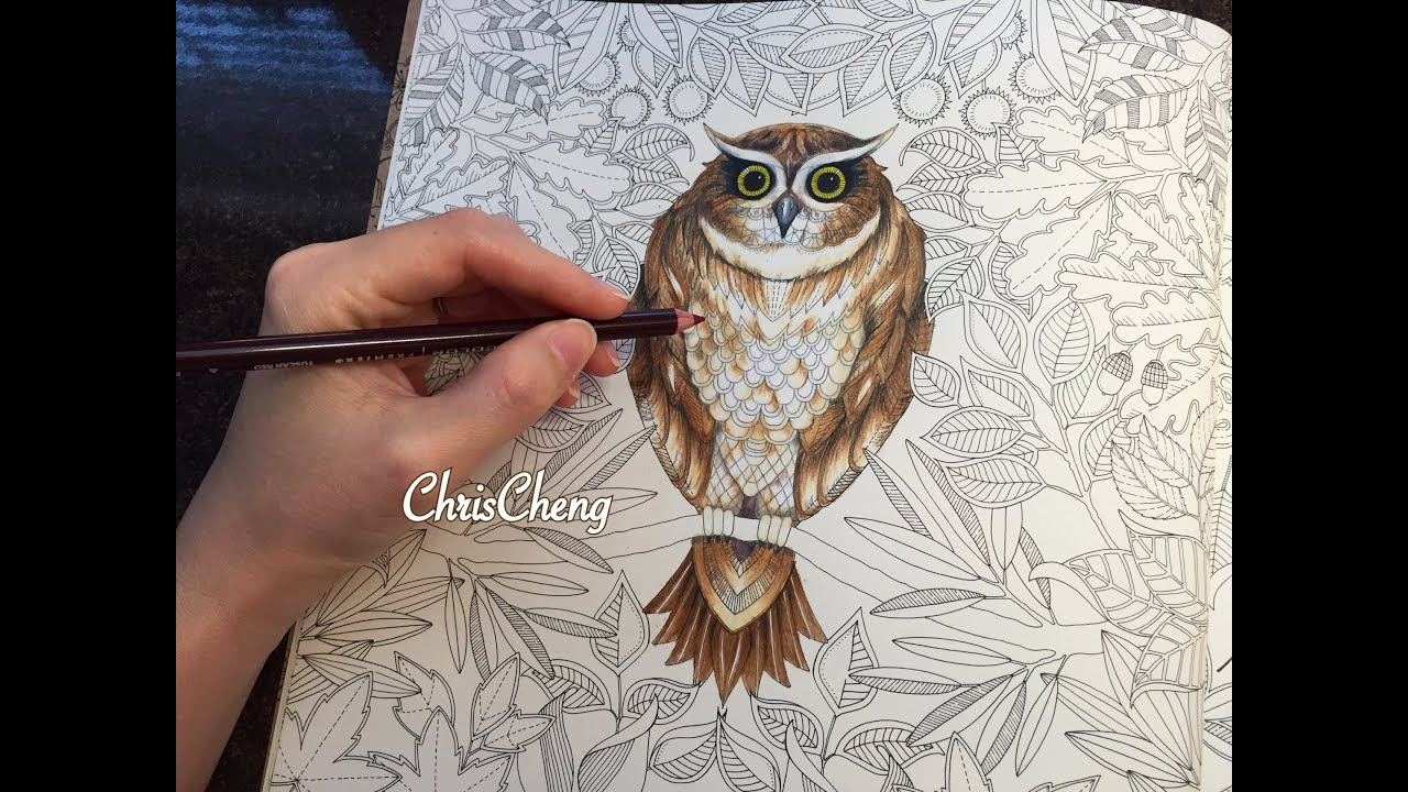 owls drawing coloring with colored pencils secret garden youtube