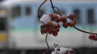 降雪の平成最後の年末を迎え、205系ハエ83編成も元に戻り重機も動かず静かな長野総合車両センター。