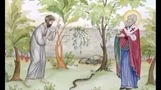 Рассказы о святых. Спиридон Тримуфунский