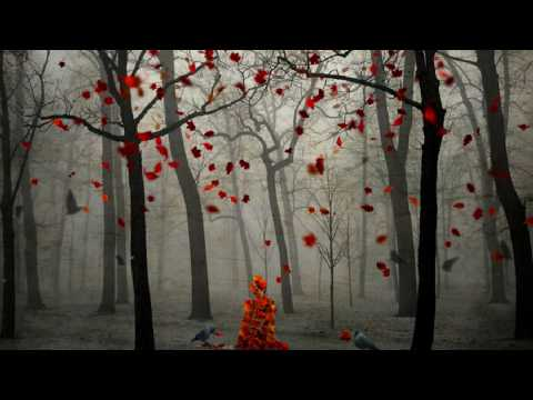 Veselin Tasev - After Sunset 2009 (Arctic Moon Remix)