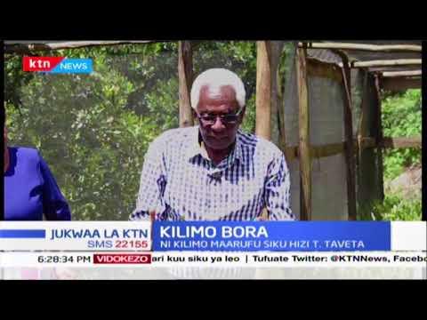 Kilimo cha makadamia Taita Taveta | KILIMO BORA (Sehemu ya kwanza)