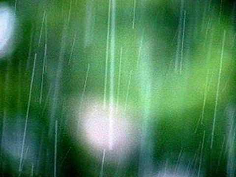 Cơn mưa hạ - Trần Thu Hà