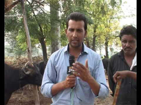 Pain of Border Area People. Covered by Parveen Sharma