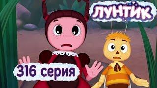 Лунтик и его друзья - 316 серия. Тайник