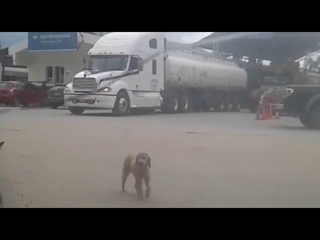 Preocupa en Salvador Mazza el paso de camiones desde Bolivia