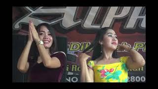 Alpa Musik Vol 11 live Kayu Liak Sungkai Selatan Orgen Lung Oksastudio