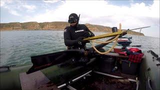 ПОДВОДНАЯ ОХОТА ГОРБЫЛИ ЗАПОЛОНИЛИ ТАРХАНКУТ Underwater fit грядет