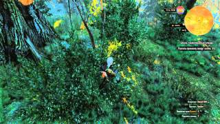 The Witcher 3: Wild hunt (заказ: черт-Ревун)