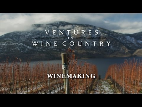 Ventures in Wine Country | Episode 4: Winemaking