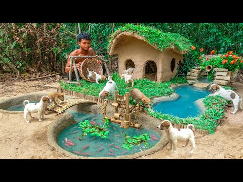 rescue-abandoned-puppies-building-mud-house-dog-and-fish-pond-for-red-fish