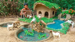 Rescue Abandoned Puppies Building Mud House Dog  Fish Pond For Red Fish