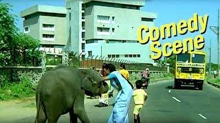 Baby Elephant Enters City | Comedy Scene | Main Tera Dushman | Hindi Film