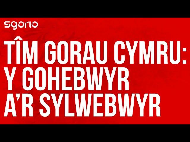 Tîm Gorau Cymru - Wales All-Time XI: gohebwyr a sylwebwyr - reporters and commentators