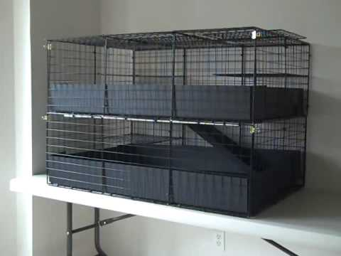 C c guinea pig cage 2x3x2 large 2 level colonial enclosed for Making a c c cage