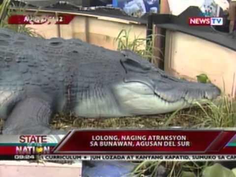 SONA: Labi Ni Lolong, Susuriin Ang Dahilan Ng Pagkamatay