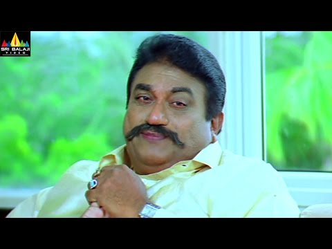 Jayaprakash Reddy Comedy Scenes Back to Back | Vol 2 | Non Stop Telugu Comedy  | Sri Balaji Video