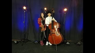 Maarder - ViBe for Violin and Bass. Performed by Shannon Fitzhenry and Jianze Zhang.