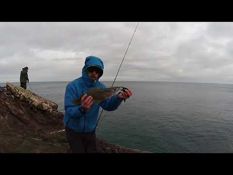 Winter Lure Fishing- Pollack, Coalies, Codling And The Police