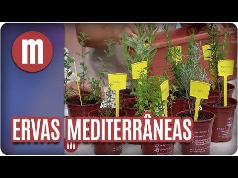 Ervas do mediterrâneo - Mulheres (09/02/18)