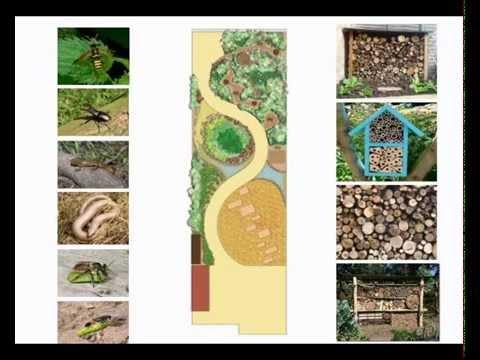 The Recycled Wildlife Garden