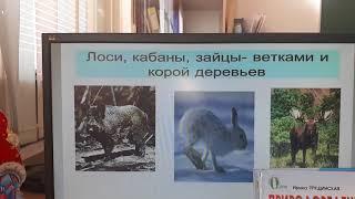 Природоведение 2 класс Живая и неживая природа зимой