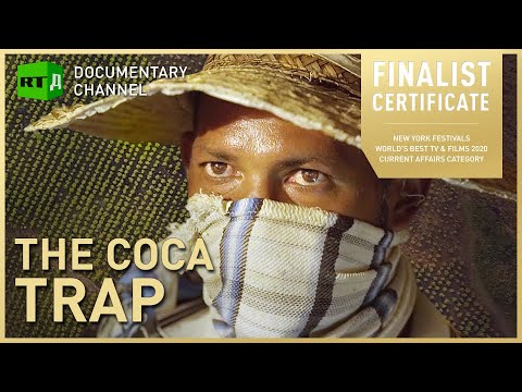 The Coca Trap. Non-Narcos: Colombia's coca growers fight for alternative to their trade