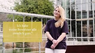Video Elli Klix