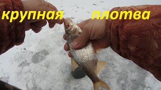 Зимняя рыбалка в декабре Хороший клёв плотвы голавля окуня
