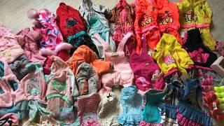 Вся одежда моих собак. Йоркширские терьеры