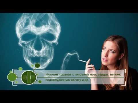 Справочник здоровья Табачная зависимость