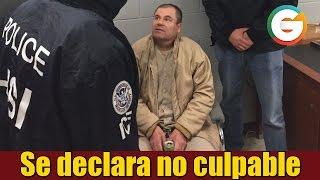 El Chapo se declara no culpable