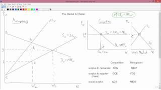 Intermediate Microeconomics: Monopsony