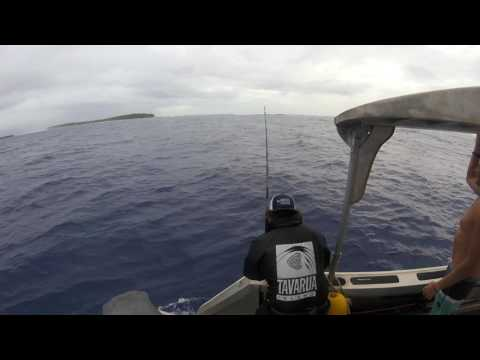 90lb sailfish in Marshall Islands